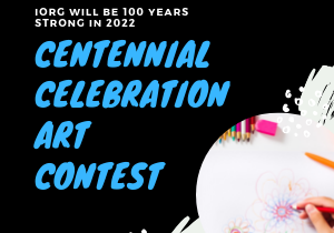 300x250 Web 100 Years Pin Competition